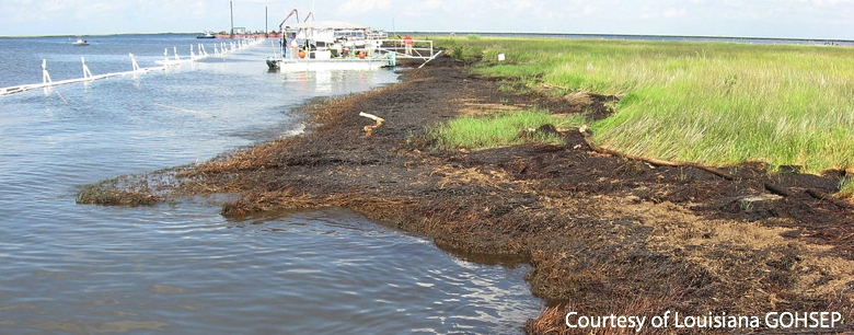 Deepwater Horizon Spill Caused Shore Erosion in the Gulf of