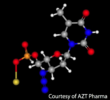 AZT, a Nucleoside Inhibitor