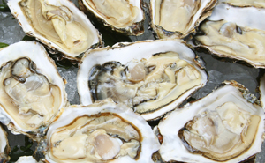 Oyster-Eating Safety Tips