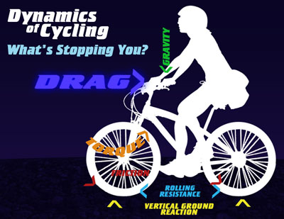 Dynamics of Cycling