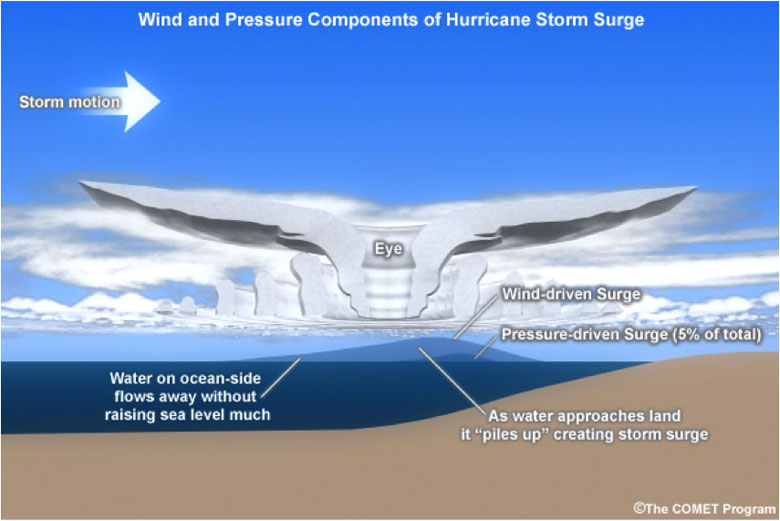 Wind and Pressure Cpmonents of Hurricane Storm Surge